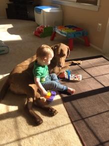 baby-boy-dog